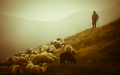Year-B-Easter-04-I-am-the-good-shepherd