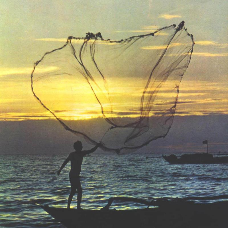 Year-A-Epiphany-03-Net-Fishing-Square